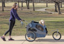 How to Choose the Right Stroller for Large Dog