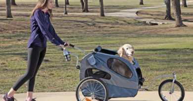 Stroller for Large Dog