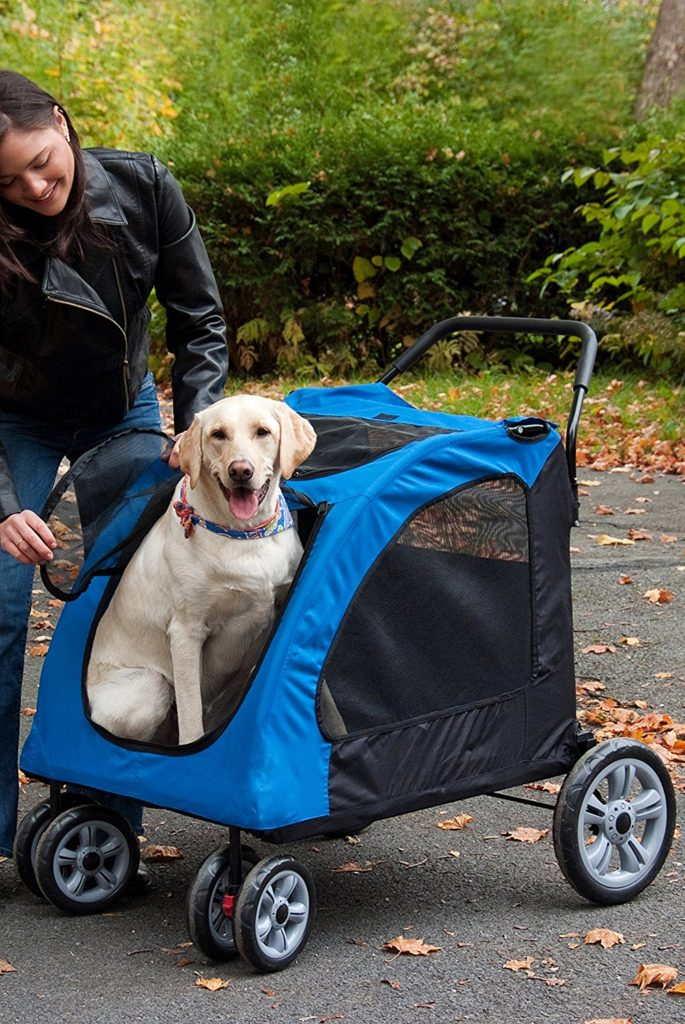 stroller for big dogs