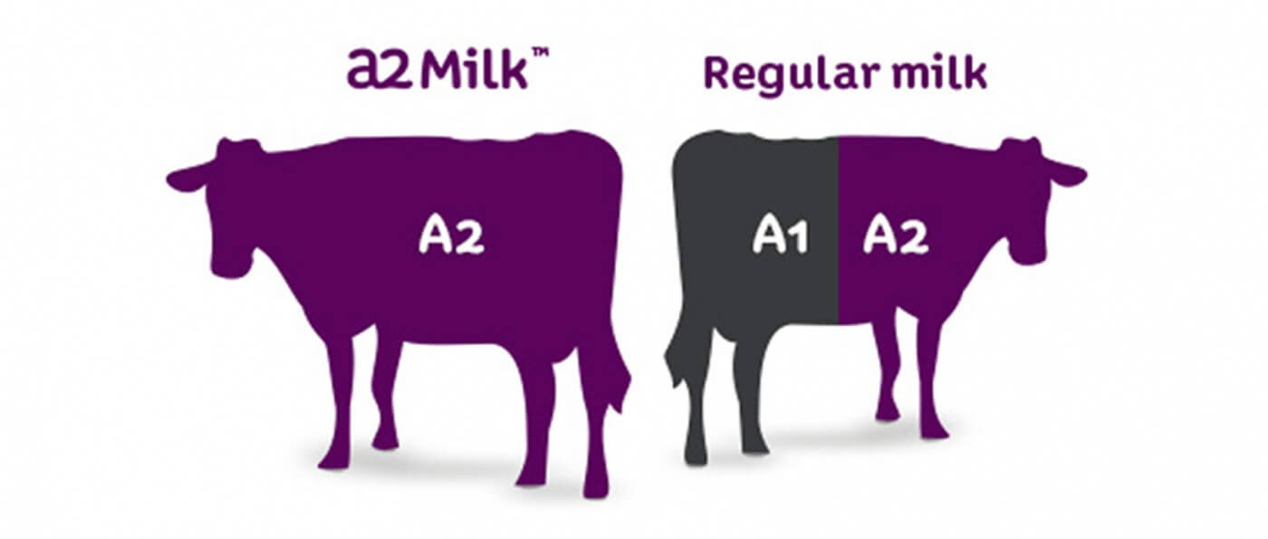 A2 Milk for Kids