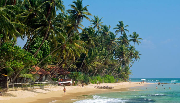 Sri lanka Destination