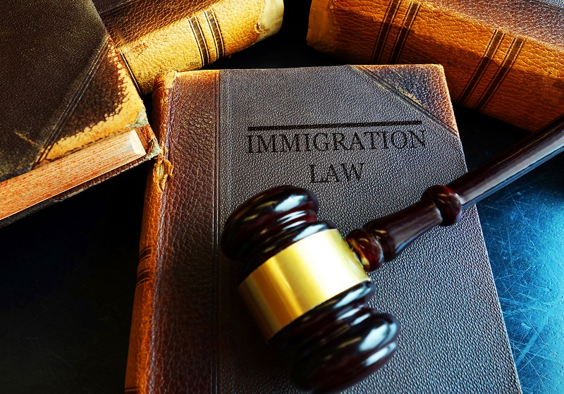 Immigration Lawyers (4)