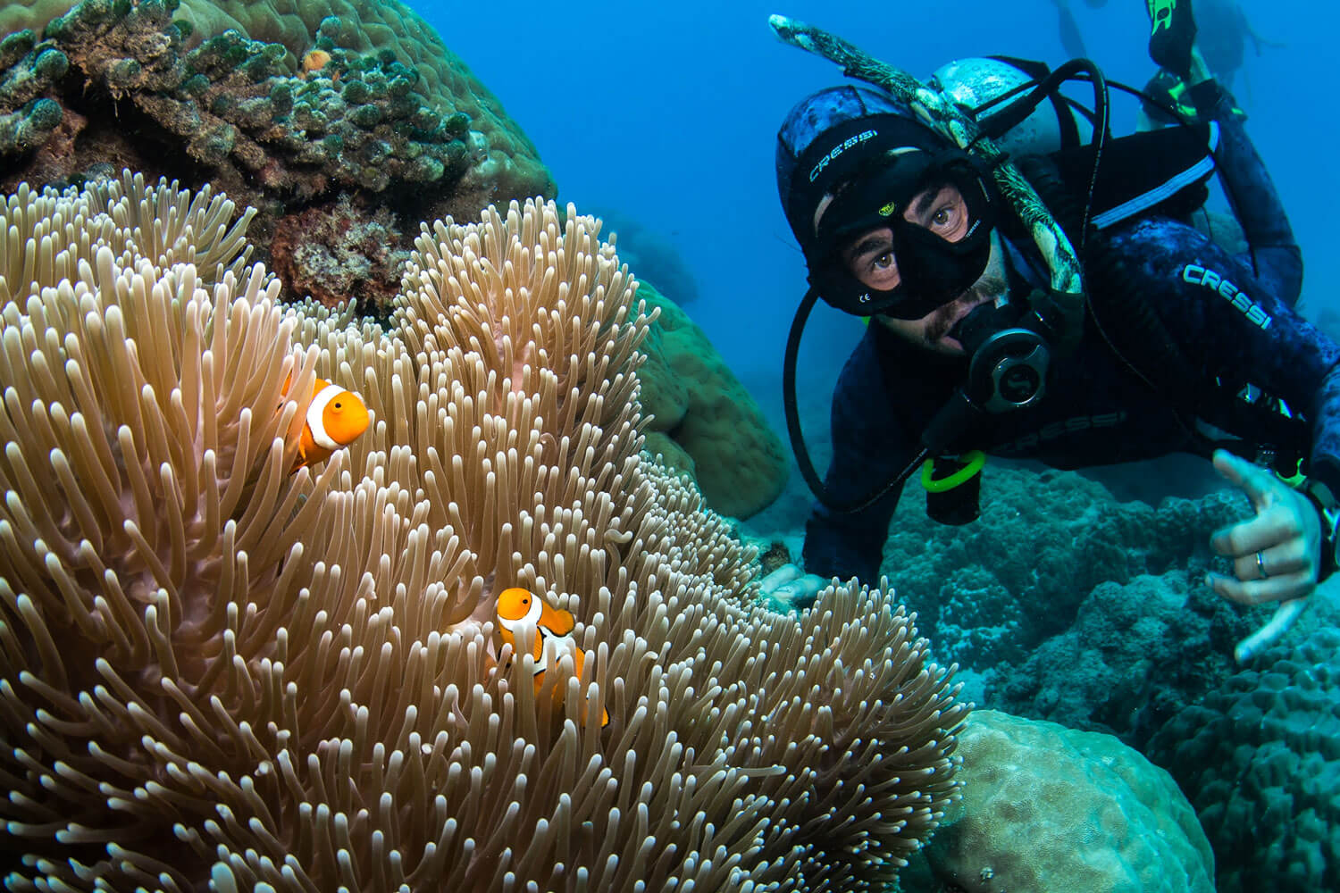 Scuba dive at Great Barrier Reef